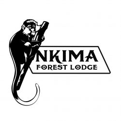 Nkima Forest Lodge